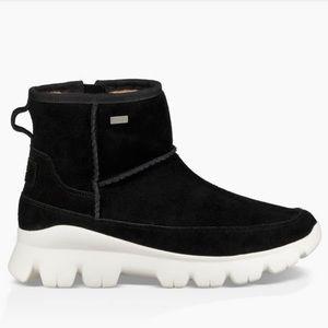 6c191791f93 Winter 2018. UGG Paloma's Sneaker - Black - 7.5